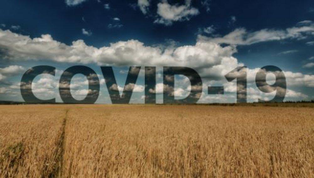 Започна приемът на заявления за подпомагане по подмярка COVID 3